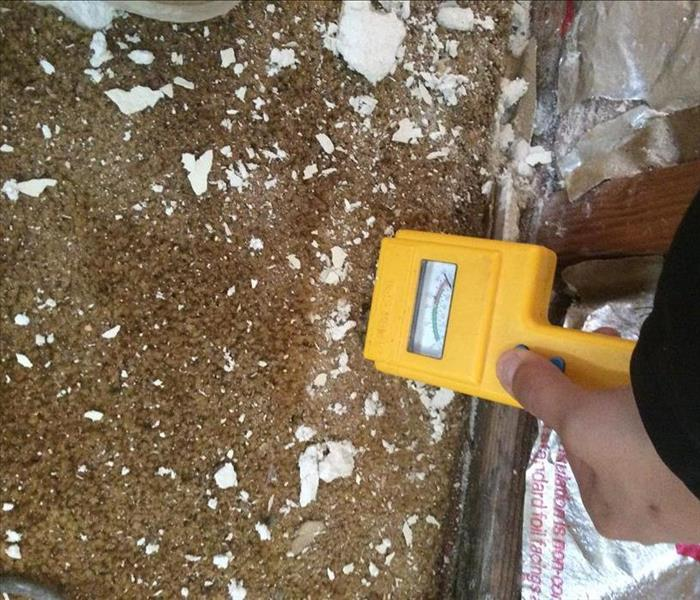 Fort Bragg Mold Cleanup | SERVPRO of Mendocino County
