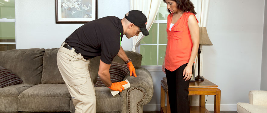 Ukiah, CA carpet upholstery cleaning