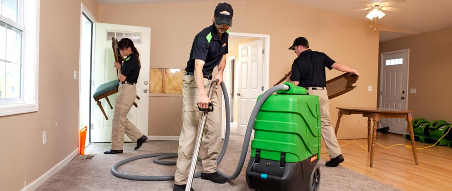 Ukiah, CA cleaning services